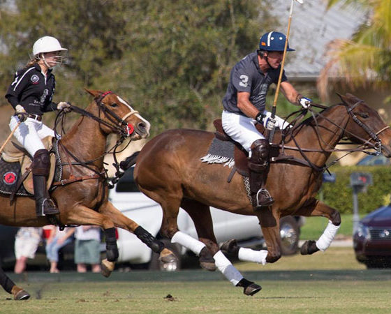 Luxury-Resort-Polo